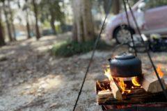 Dayキャンプ